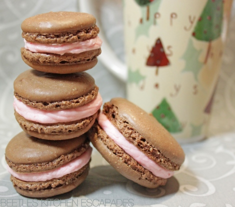 Chocolate Peppermint French Macarons